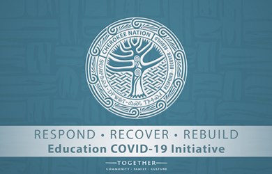 Respond Recover and Rebuild Education Initiative